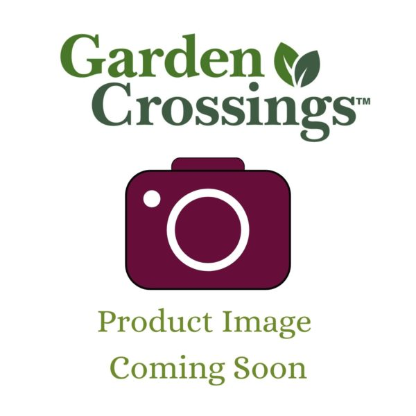 Garden Crossings Image Placeholder