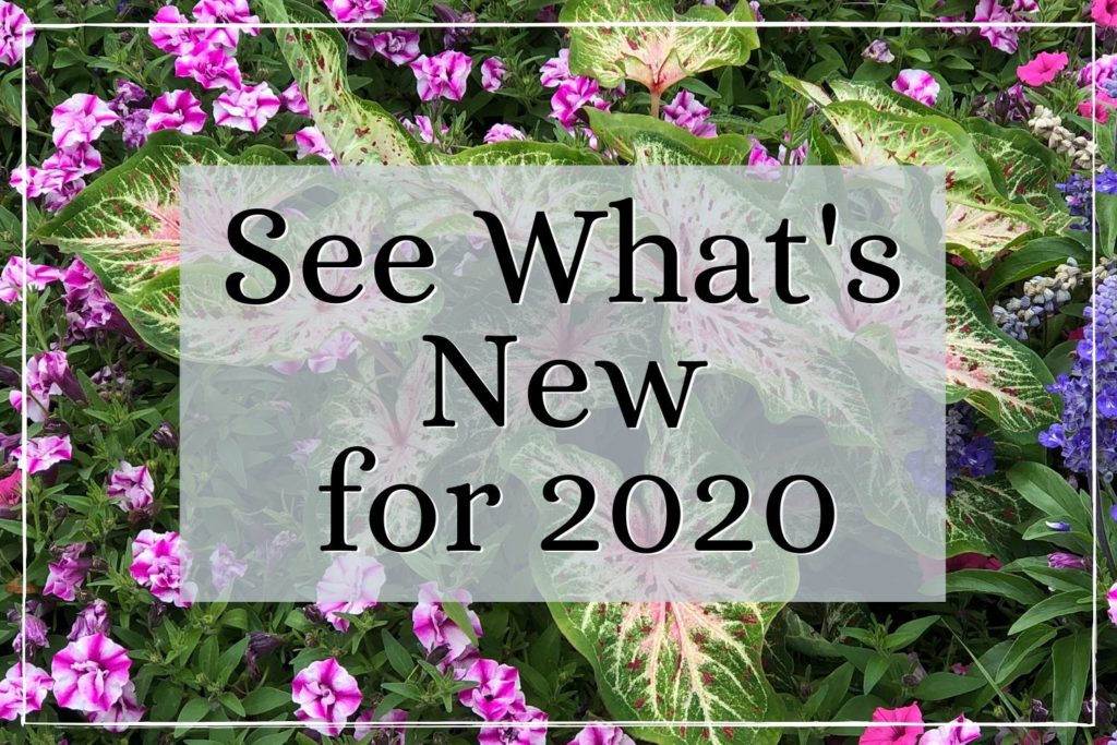 See What's new for 2020